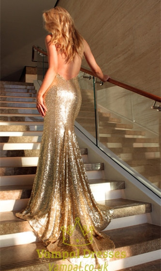 Champagne Spaghetti Strap V Neck Backless Mermaid Long