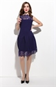 Navy Blue Sleeveless Illusion Neckline Dress With Lace Detail