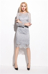 Grey Lace Illusion Neckline Overlay Sheath Dress With Sleeves