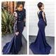 Navy Blue Applique Bodice Sheer Sleeve Sheath Mermaid Prom Dress