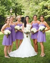 Lavender Strapless Sweetheart Empire Waist Short Chiffon Bridal Dress