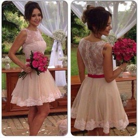 Vintage Lace Embellished Short Sleeveless Knee Length Homecoming Dress