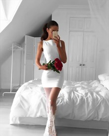 White Sleeveless Short Sheath Cocktail Dress With Sheer Overlay
