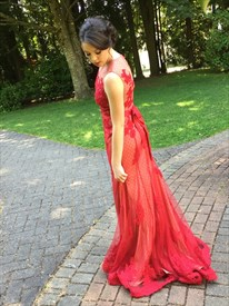 Red Sheer Beaded Lace Applique Sleeveless Floor Length Formal Dress