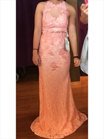 Peach Sheer Illusion Neckline Sleeveless Lace Long Prom Dress