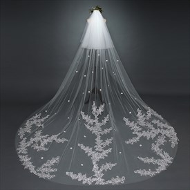 Two-Tier Cathedral Bridal Veil With Lace Applique Embellished