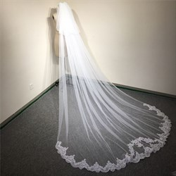 Two-Tier Lace Applique Embellished Edge Cathedral Bridal Veil