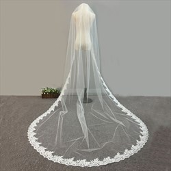 One-Tier Lace Applique Embellished Edge Cathedral Bridal Veil