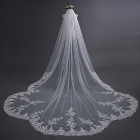 One-Tier Elegant Lace Applique Edge Cathedral Length Bridal Veil