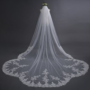 One-Tier Elegant Lace Applique Edge Cathedral Length Bridal Veil