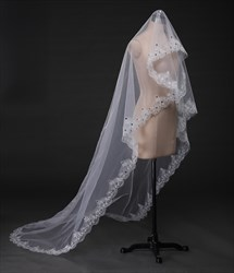 One-Tier Embellished Lace Edge Chapel Length Bridal Veil