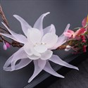 Beautiful Faux Pearls/Dried Flower/Fabric Flower Headbands