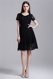 Simple Short Sleeve A-Line Knee Length Lace Overlay Casual Dress