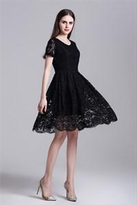 Simple Short Sleeve A-Line Knee Length Lace Overlay Casual Dress