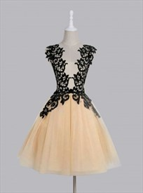 Light Champagne Short Homecoming Dress With Black Lace Embellished