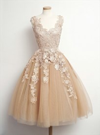Lovely Light Champagne Sleeveless A-Line Lace Tulle Homecoming Dress