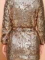 Gold Embellished Sequin Party Mini Dress With Long Sleeves