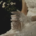 Tulle Gloves With Feather Embellished