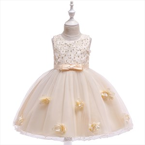 Girls Floral Embellished Princess Party Dress With Pearls