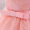 Off The Shoulder Lace Trim Tulle Toddler Girl Birthday Dress