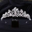 Alloy Leaf Birthday Girl Bridal Tiara With Pearls