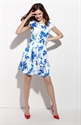 Floral Print Fit And Flare Skater Dress With Cap Sleeves